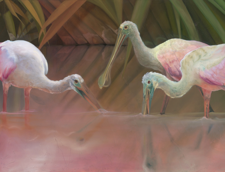"""Slanted Sun's Last Call"" - Roseate Spoonbills oil on canvas by Allison Richter"