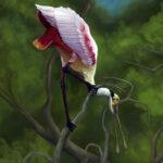 "Spoonbill Original Artwork Oil on Canvas ""Twisted Point of View"""