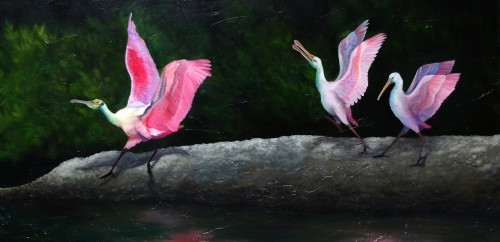 Spoonbill Original Artwork Oil on Canvas