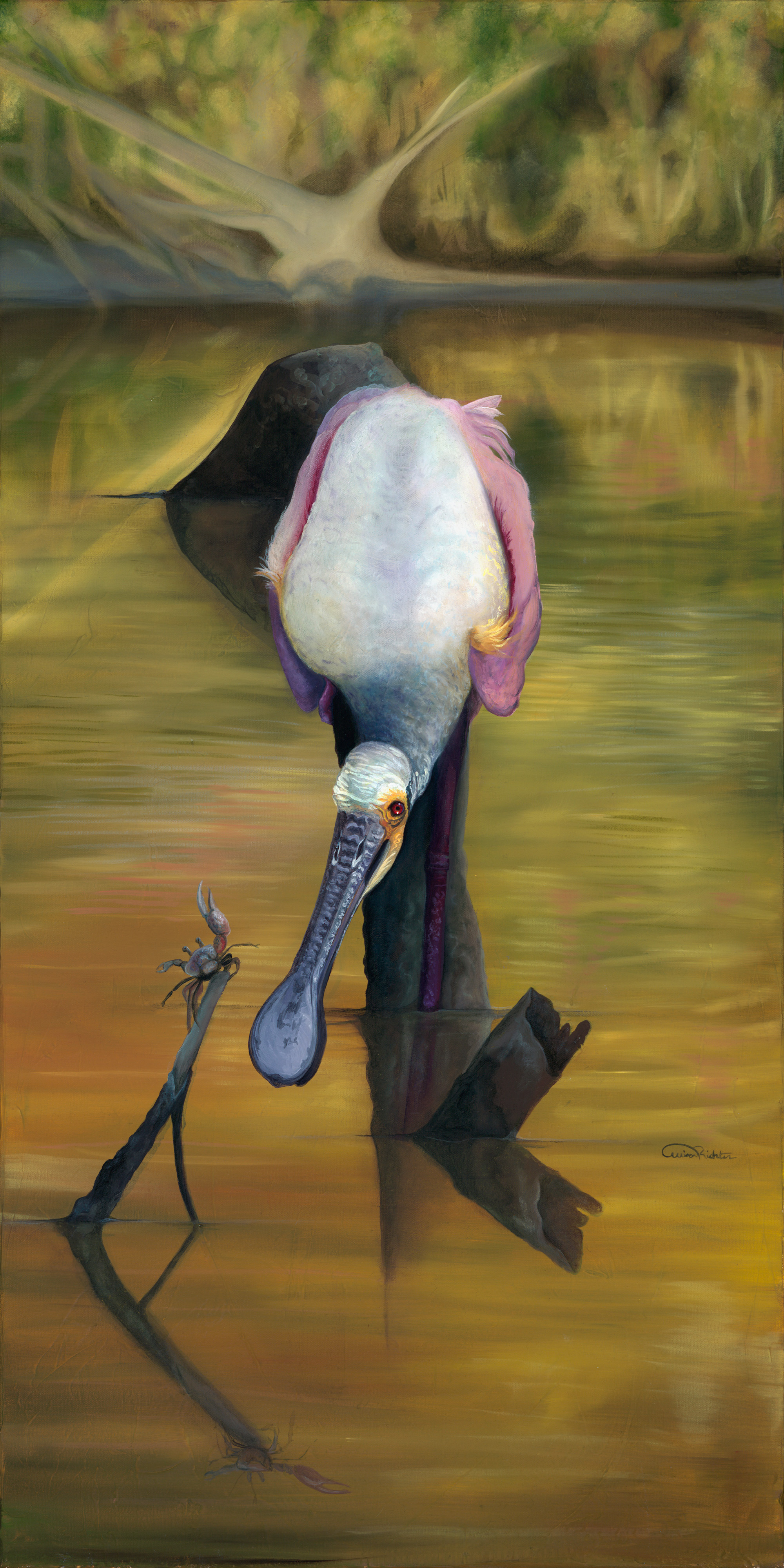 "Spoonbill Original Artwork for Sale ""I See You"""