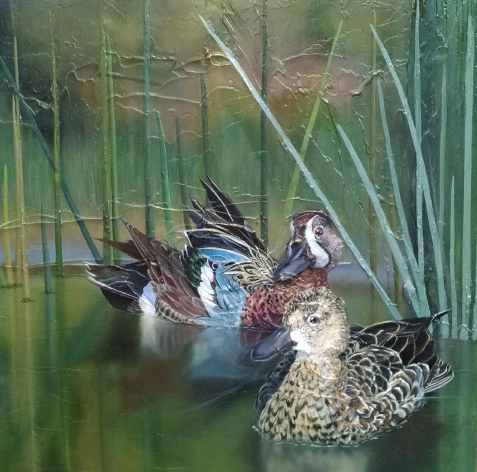 Teal Wing Ducks Oil On Canvas Progress Image